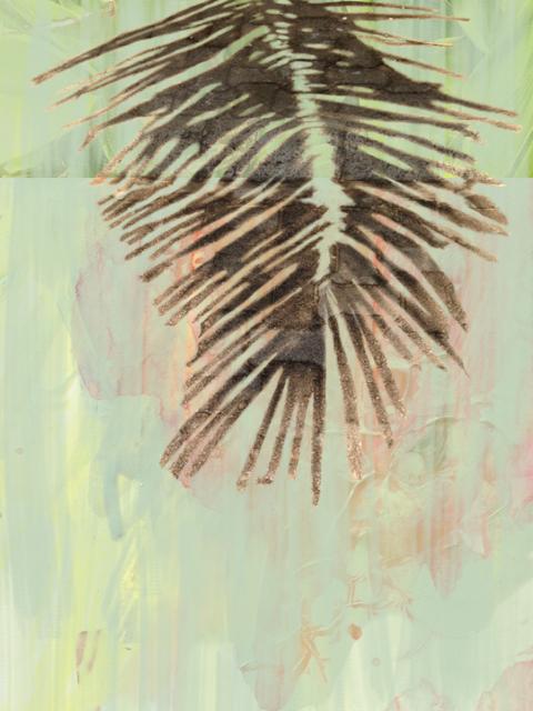 A sombra de uma palmeira 5